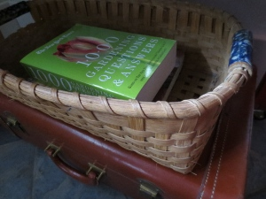 All my old garden magazines + a NY Times gardening book from my stepdaughter, Marnie.  Good giftage!