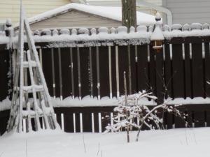 fence snow #2