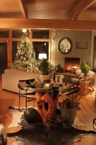 alan's living room wide shot
