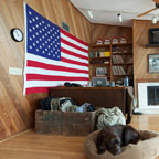 flag in living room with brown upholstery