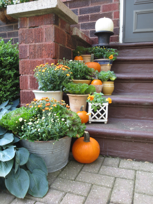 fall at the bungalow steps with tin bucket