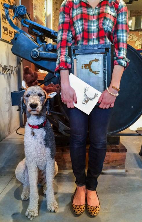 new orleans shop dog